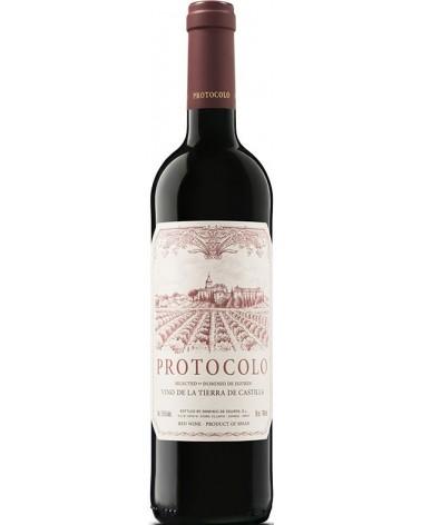 Protocolo Tinto 2016