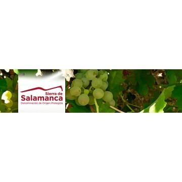 V.T. Sierra de Salamanca
